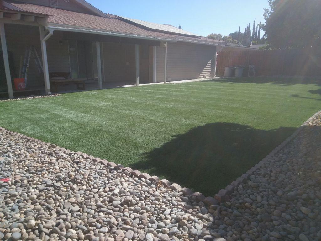 Back yard beutification