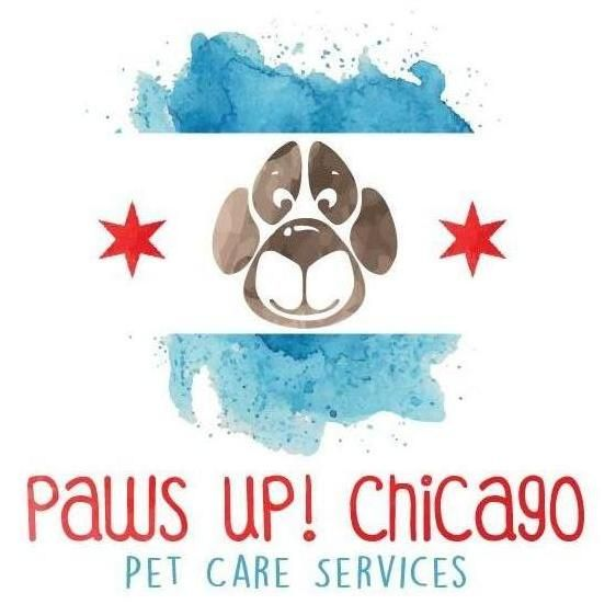 Paws Up! Chicago