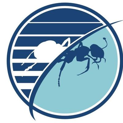 Avatar for Budget Pest Control, Inc.
