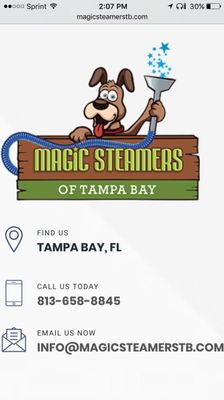 Avatar for Magic Steamers Of Tampa Bay LLC