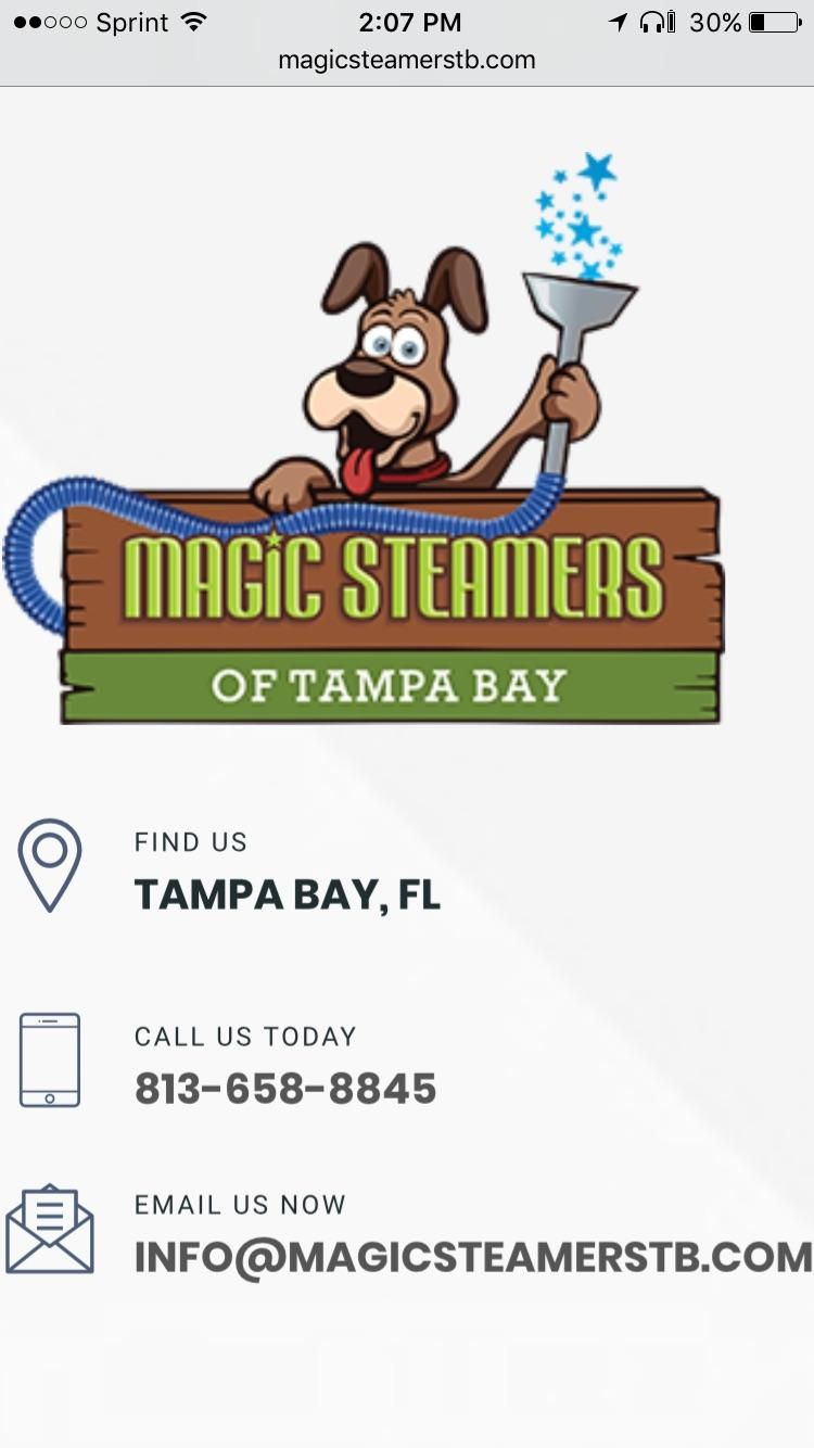 Magic Steamers Of Tampa Bay LLC