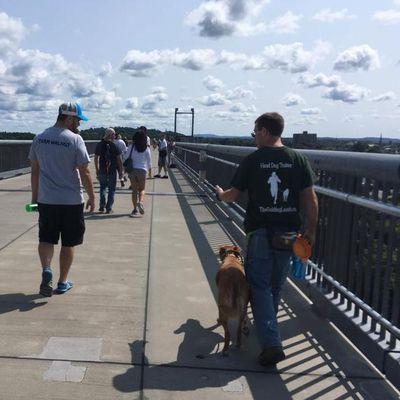 Avatar for The Guiding Leash Dog Training and Behavior Sol... Mount Kisco, NY Thumbtack