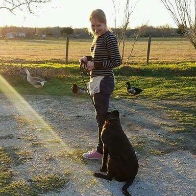 Avatar for Better Behavior Dog Training Anchorage, AK Thumbtack