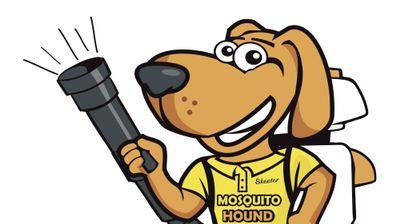 Avatar for Mosquito Hound