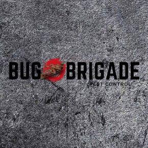 Avatar for Bug Brigade LLC Luther, OK Thumbtack