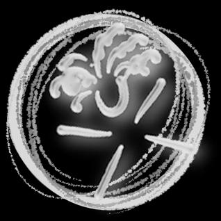 Avatar for Imagination 2 Infinity, LLC