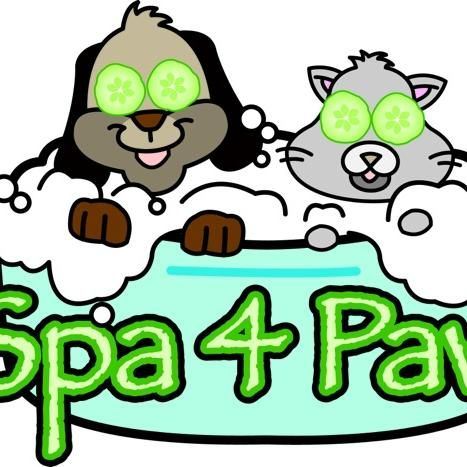 Spa 4 Paws Pet Grooming