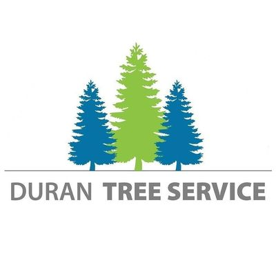 Avatar for Duran Tree Service Hillsboro, OR Thumbtack