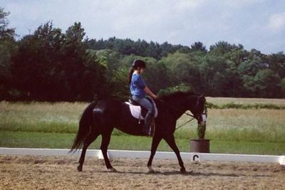 Avatar for Horseback Riding Lessons Available Stoughton, MA Thumbtack