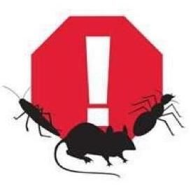 Avatar for AAA Pest Pros West Middlesex, PA Thumbtack