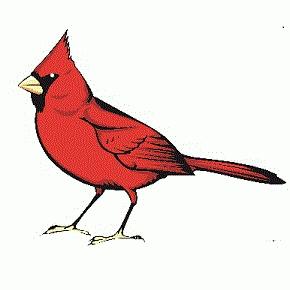 Avatar for Cardinal Electric, Inc West Palm Beach, FL Thumbtack