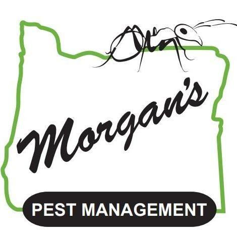 Morgan's Pest Management
