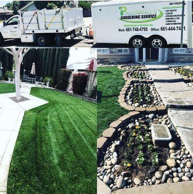 Avatar for Palomino's Gardening Service Bakersfield, CA Thumbtack