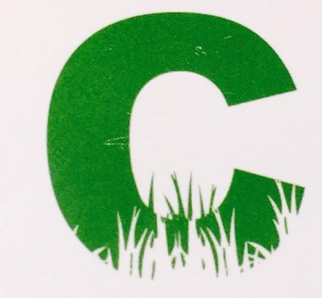 Candelario lawn service and landscape