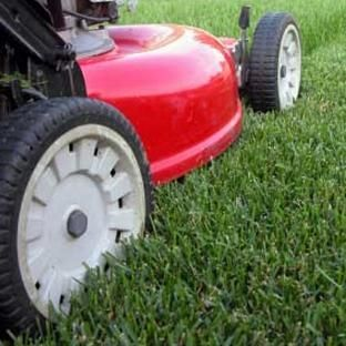 Clean Green Lawn Care