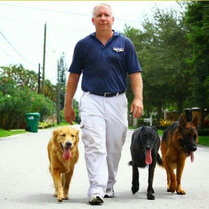 The Miami Dog Whisperer