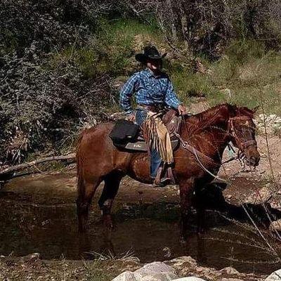 Brockway Ranch Surprise, AZ Thumbtack