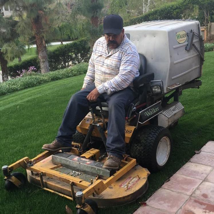 Benjamin Landscaping Service