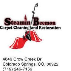 Steamin Beemon Carpet Cleaning