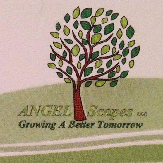Angel Scapes LLC