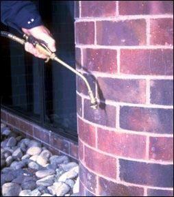 exterior ant service