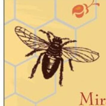 Avatar for Queen Bee Home Cleaning L.L.C