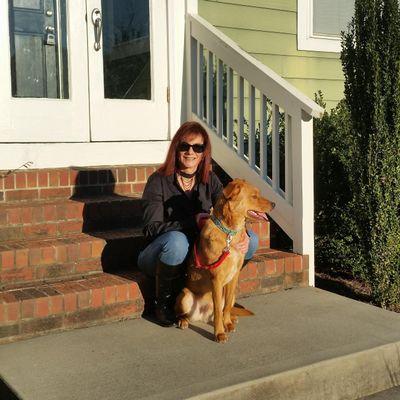 Avatar for CANINE PawRTNERS DOG TRAINING Charlotte, NC Thumbtack