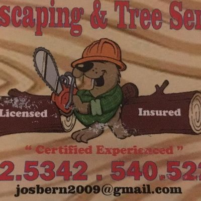 Avatar for DAN'S LANDSCAPING & TREE SERVICE