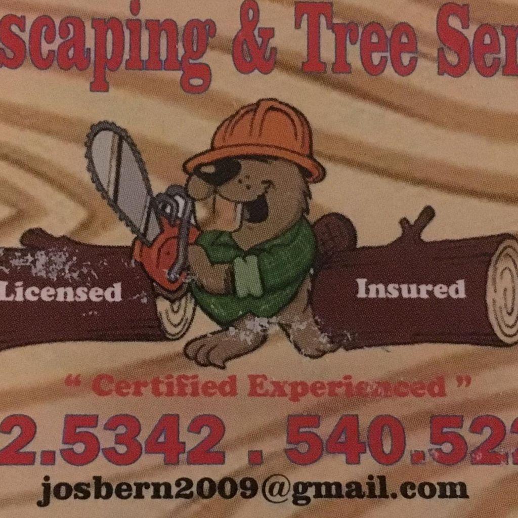 DAN'S LANDSCAPING & TREE SERVICE