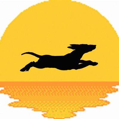 Avatar for SUNNY DOGS TRAINING COMPANY LLC