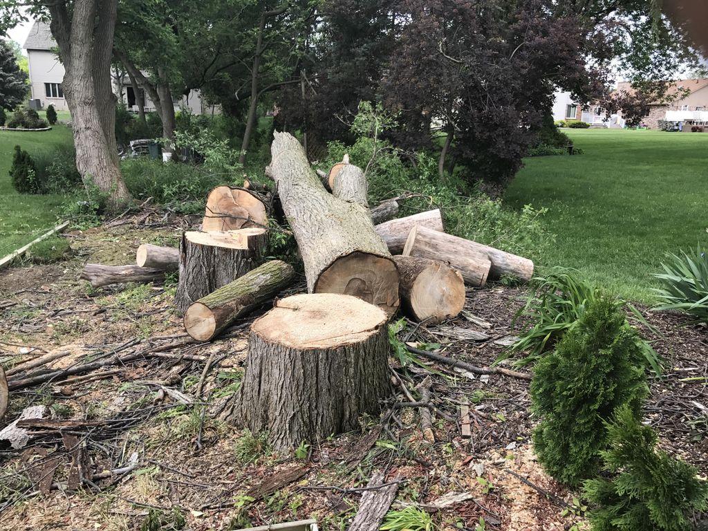 Jef. R. Maintenance &Tree Service