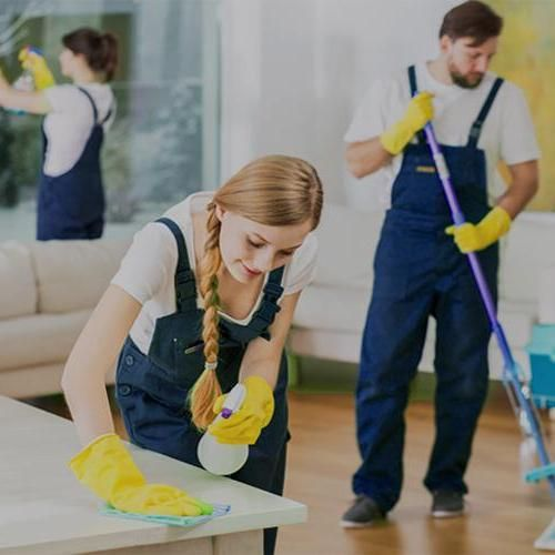 Mint Cleaning & Household Services