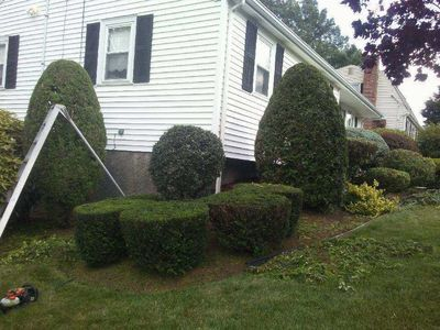 Avatar for AAA Franco Landscaping Pawtucket, RI Thumbtack