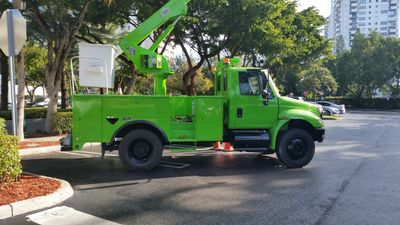 Avatar for Tree Techs Professional Arbor Care