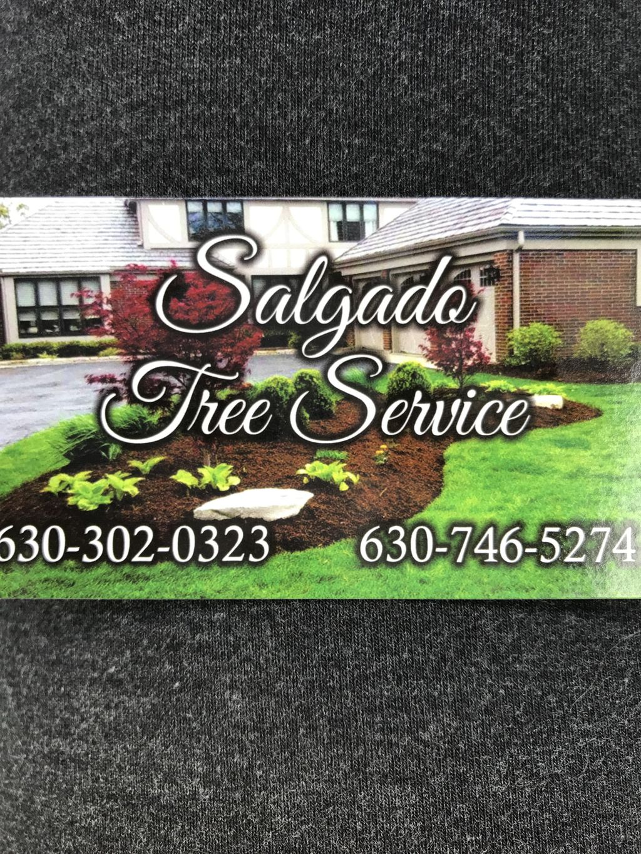 Salgado Landscape and Tree Service