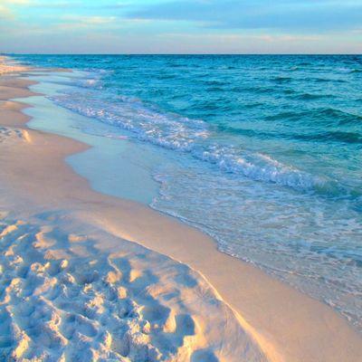 Avatar for Robert Mooneyham Pensacola, FL Thumbtack
