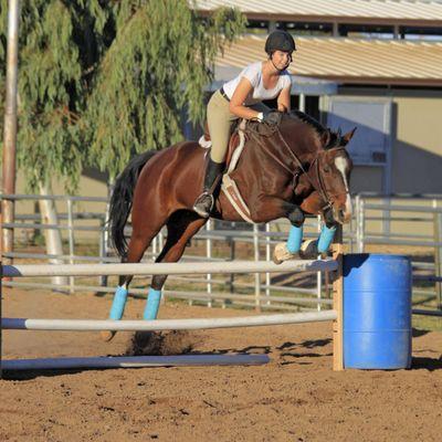 Avatar for Bay Bridge Equestrian Casa Grande, AZ Thumbtack