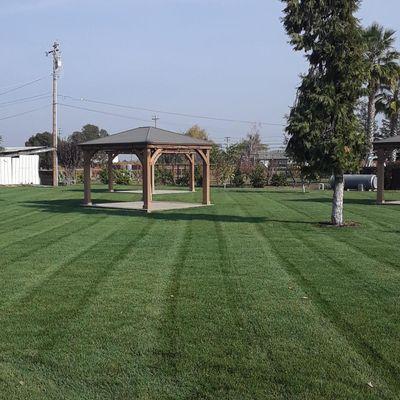 Avatar for Ortiz Lawn Care
