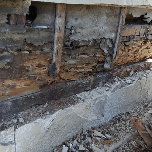 Termites!!!UGH this may be your house