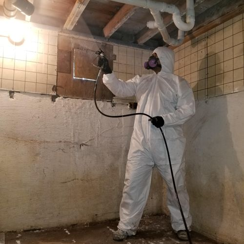 Mold Remediation : Applying Mold Resistant Encapsulant (Final Step After Clean Air Confirmation)