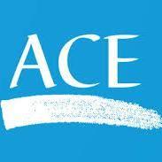 Avatar for Ace Construction