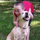 Hand 2 Paw Dog Training