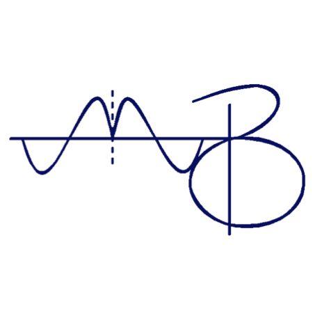 Matt Blaisse Piano Service (mbpianoservice.com)