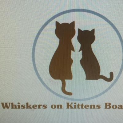 Avatar for Whiskers on Kittens Cat Boarding