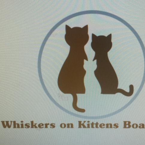 Whiskers on Kittens Cat Boarding