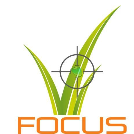 FOCUS CONCENTRATED Lawn Care - FCLC