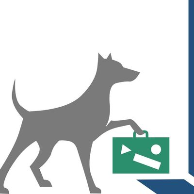 Avatar for Wagging Tails Pet Sitting Lexington, KY Thumbtack