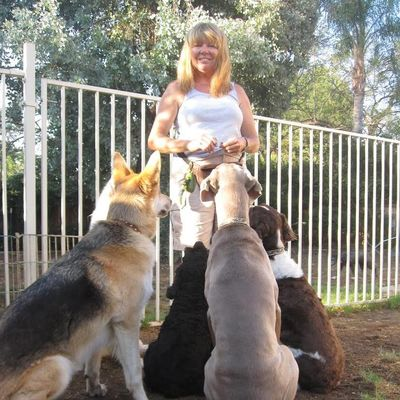 Avatar for Canine Companions Family Pet Services Yucaipa, CA Thumbtack