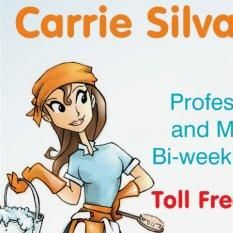 Carrie Silva Enterprises.        Cleaning, Cons...