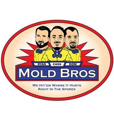 Avatar for Mold Bros LLC
